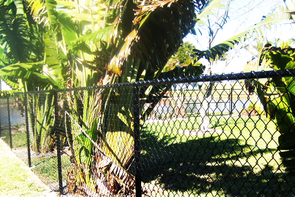 Chainlink Fence installation broward county